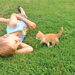 interesting summer summertime summervibes boy pconthegrass pcpicsartpets
