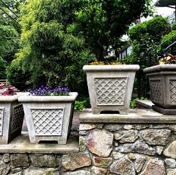 freetoedit flowerpots spring floral backgrounds