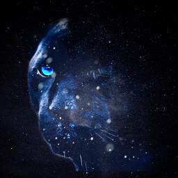 ircgalaxies galaxies freetoedit panther galaxy