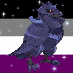 acefamily pokemon raven freetoedit