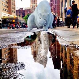 surreal surrealart madewithpicsart picsarteffects picsarttools freetoedit