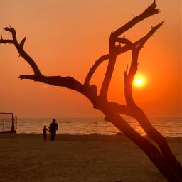 freetoedit sunset bahrain (null) bluehour