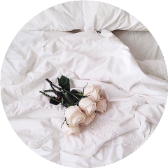 circle aesthetic white bed rose freetoedit
