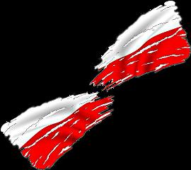 flag flagstickers polish polishgirl polska freetoedit scworldflags