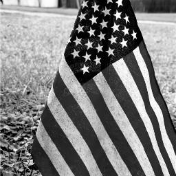pcflagday flagday photographychallenge flags redwhiteandblue