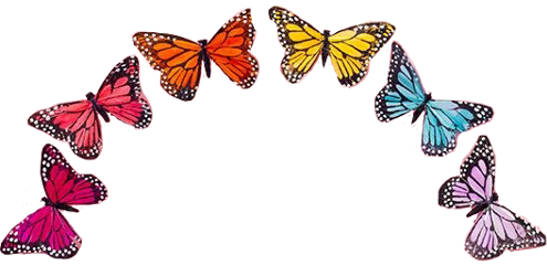 butterfly rainbow butterflies arch colorful freetoedit