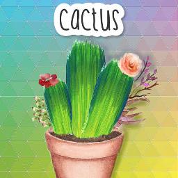 srcgreenbrushstroke greenbrushstroke freetoedit cactus