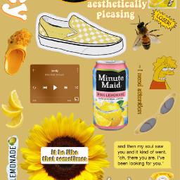 interesting yellow vans honey sunflower freetoedit