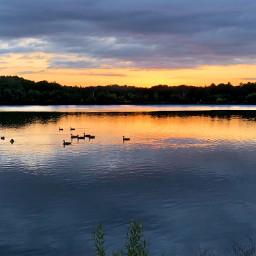 freetoedit sunset reflections silhouette pond