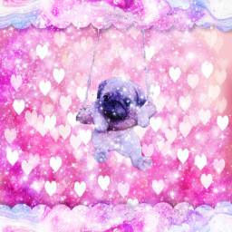 galaxyhearts adoreable pug freetoedit