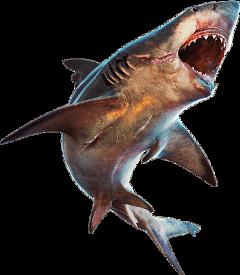 ftestickers shark monster sea animal freetoedit