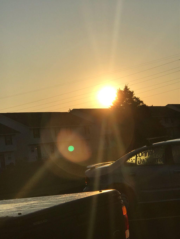 #goodmorning #sunrise #sunny #bright #dew