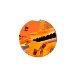 unsplash orange aesthetic circle profilepic freetoedit