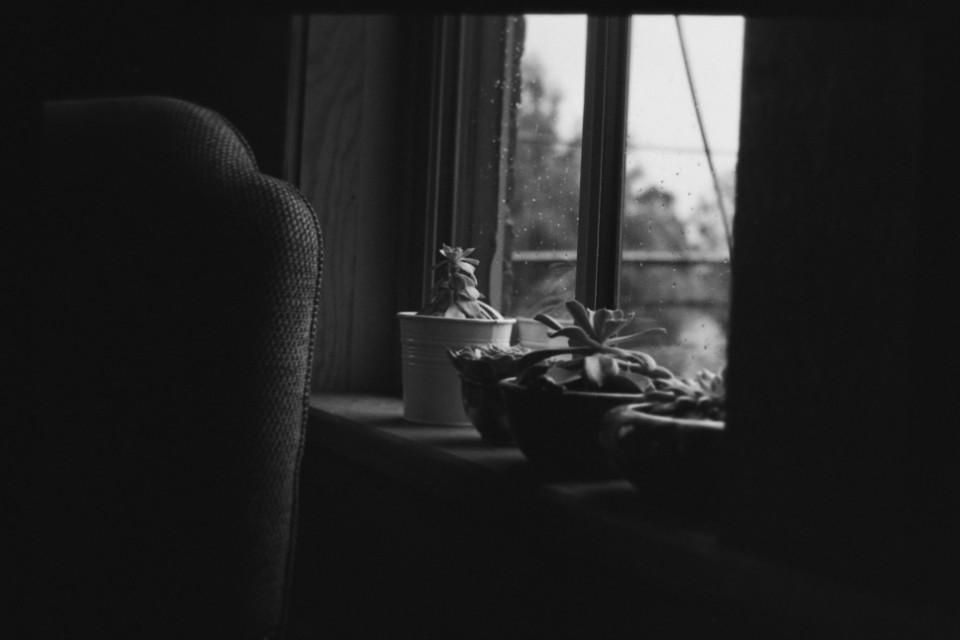 #filmphotography