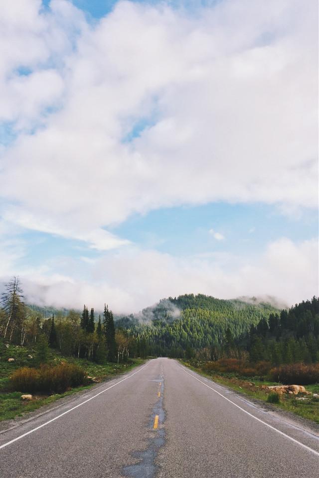 Magical remixes please!  unsplash (public domain) #freetoedit #nature #road #roadtrip #forest #mountains  #remixit