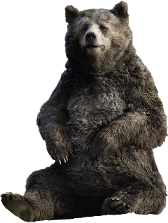 freetoedit big animal baloo bear