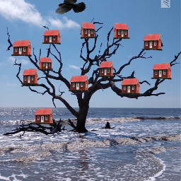 myfantasy tree houses birds nature freetoedit