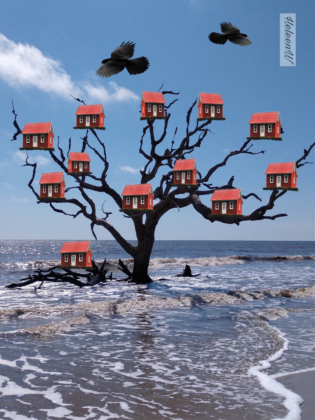#myfantasy #tree #houses #birds #nature #madewithpicsart #picsarteffects #picsarttools #colored #myedit #myart #mystyle #becreative #freetoedit Thank you @moondog for using the image