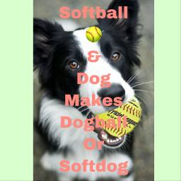 freetoedit dogball softdog bordercollie softball