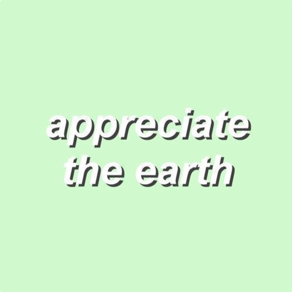 earth quote aesthetic green pastel interesting toe