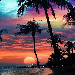beach sunset beautifull palmtree freetoedit