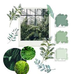 plants freetoedit palleteshow