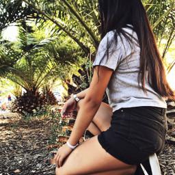 pcpalmtrees palmtrees freetoedit