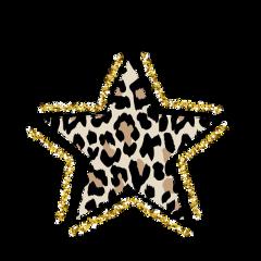 star leopard gold vsco aesthetic freetoedit