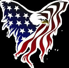 american eagle flag freetoedit