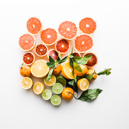 fruits summer flatlay lemon orange freetoedit