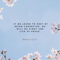 freetoedit hebrews bibleverse obey peace