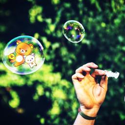 freetoedit bubbles ecrelaxwithrilakkuma relaxwithrilakkuma rillakkuma