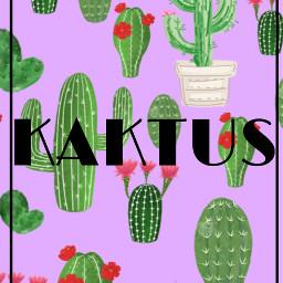 freetoedit kaktus wallpaper aesthic aesthicwallpaper