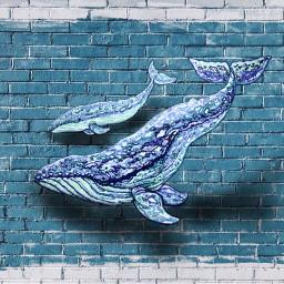 whales blue shadow myedit myidea fctesthashtag eccanvastexture freetoedit