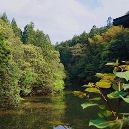 green japan brook spring kyoto