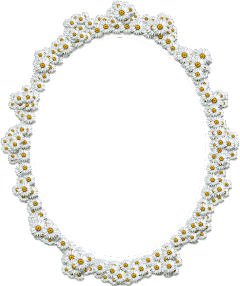 freetoedit scpictureframe white daisies ornate
