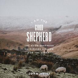 freetoedit bibleverse good shepherd john10