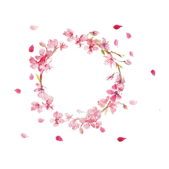 flowers circle aesthetic pink freetoedit