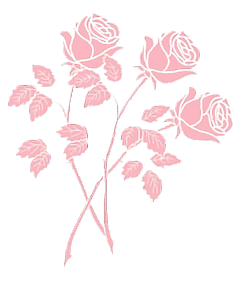 pink rose flower aesthetic freetoedit