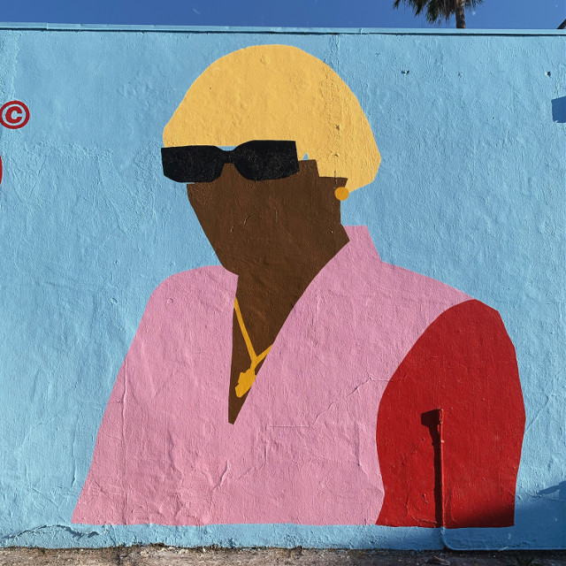 Whats your favorite song from igor? I took tbis pic in the fairfax district in Los Angeles, i love tyler sm❤️ #freetoedit #tylerthecreator #golfwang #colorful #art #music