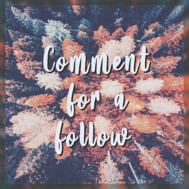 ✨𝙍𝙪𝙡𝙚𝙨✨: you must already follow me!!! You will also get a shoutout in my next post!! I will only continue this for a week or two