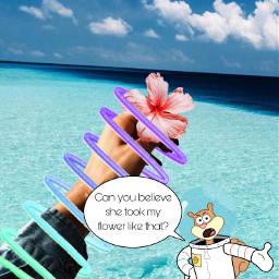 ircgiveitaway giveitaway sandy spongebob flower freetoedit
