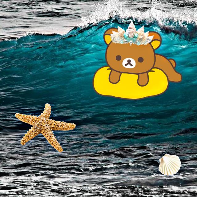 #freetoedit #lovepicsart #победа #участие #мишка🐻 #класс #море #морскаязвезда #ракушка