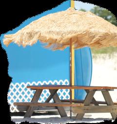 scbeachumbrellas beachumbrellas freetoedit sticker beachumbrella