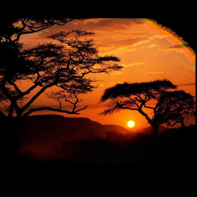 #decor #background #overlay #sunset #landscapes