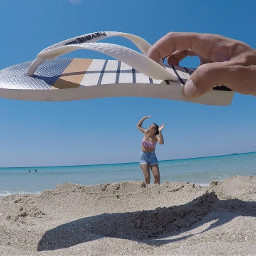 freetoedit havaianas beach summer sea