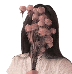 girl flowers aesthetic aestheticpink roses freetoedit