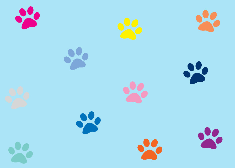#animallover #animals #paws #cute #backgrounds #freetoedit