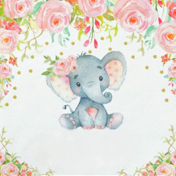 card birthday baby shower babyshower freetoedit