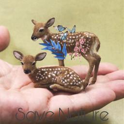 freetoedit savenature text flowers deer